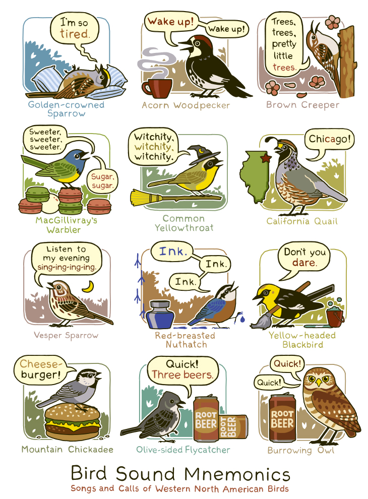 Western Bird Sounds