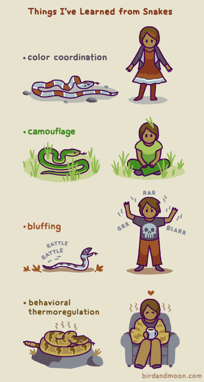 Lessons from Snakes