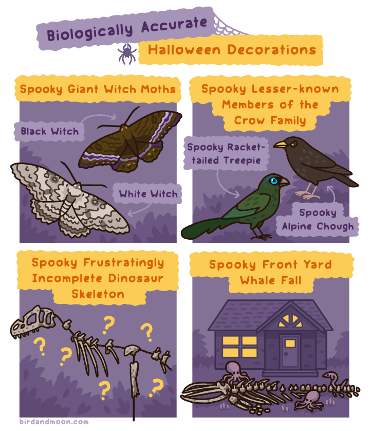 Biologically Accurate Halloween Decorations