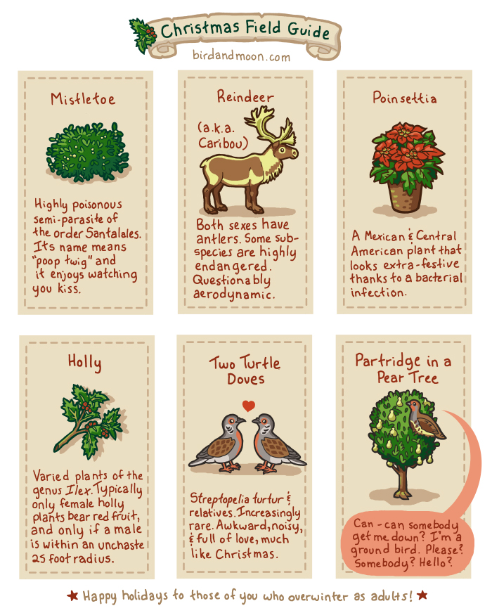 Christmas Field Guide