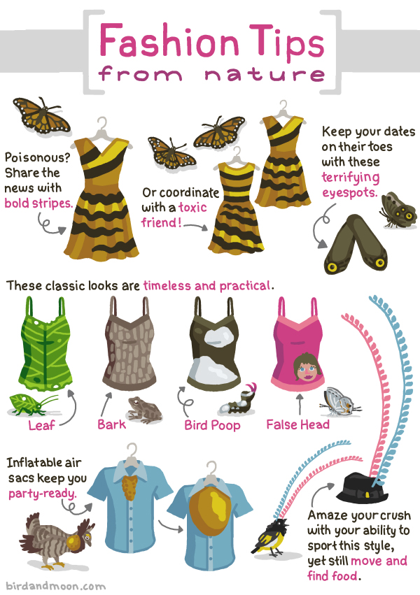 Nature Fashion Tips