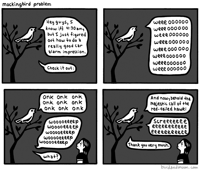 Mockingbird Problem
