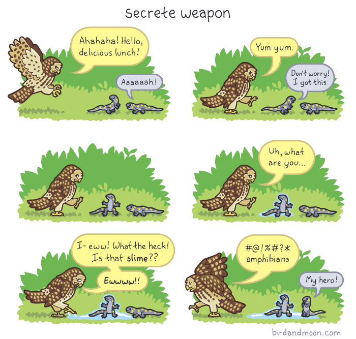 Secrete Weapon